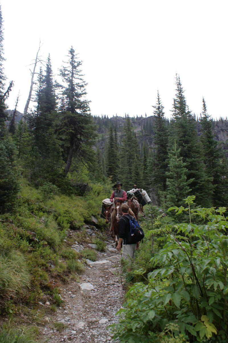 W Parkach przyjmuje się różne formy przewozu towarów i turystów - Glacier National Park