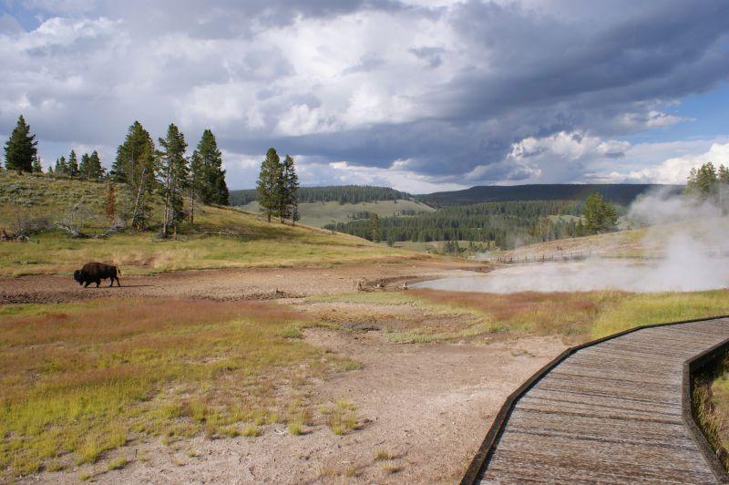 Dokładne wyznaczenie szlaków jest kluczowe dla bezpieczeństwa turystów, a nie dla ochrony dzikich zwierząt - Yellowstone National Park