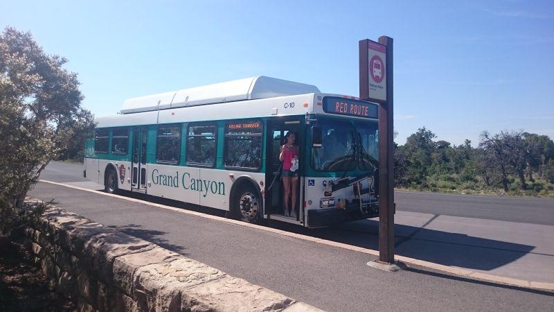 Kursujące autobusy są całkowicie za darmo i w niektóre miejsca można się tylko z ich pomocą - Grand Canyon National Park